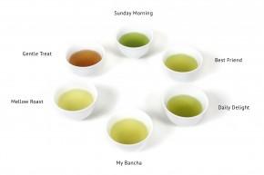 Grüner Tee Sencha mit Matcha »Daily Delight«